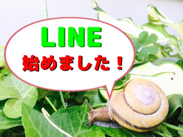 image1 (25)